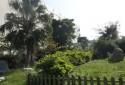 社區公園綠地