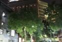 夜晚散步。。。有京華城鄰近周邊
