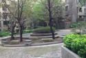 門口大花園