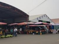 玉井青果市場