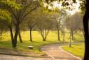 陽光運動公園