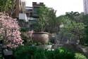 2f外觀吉野櫻植栽