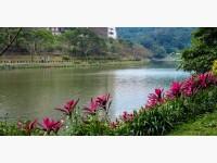 金龍湖畔-絕色