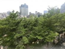 雲門登峰2房面公園