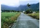 鳳林鎮-鳳鳴一路土地,320坪