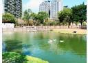 竹北市-復興二路3房2廳,100.6坪