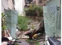 蘆洲區-長安街土地,49.9坪