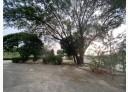 內埔鄉-屏69土地,630坪