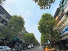 正富錦街👍樹海👍二樓~國泰建設