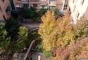 開窗就是隔壁社區花園