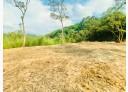 新埔鎮-縣115土地,673坪