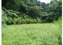 三峽區-紫微路土地,3120.2坪