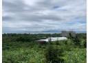 新城鄉-中山路土地,431坪